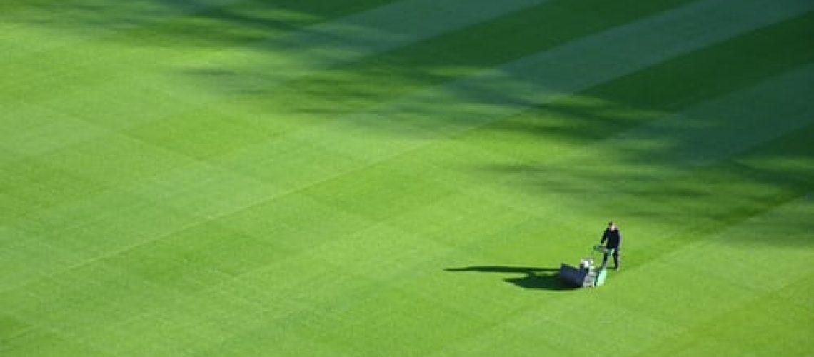 sport pitch cutting grass